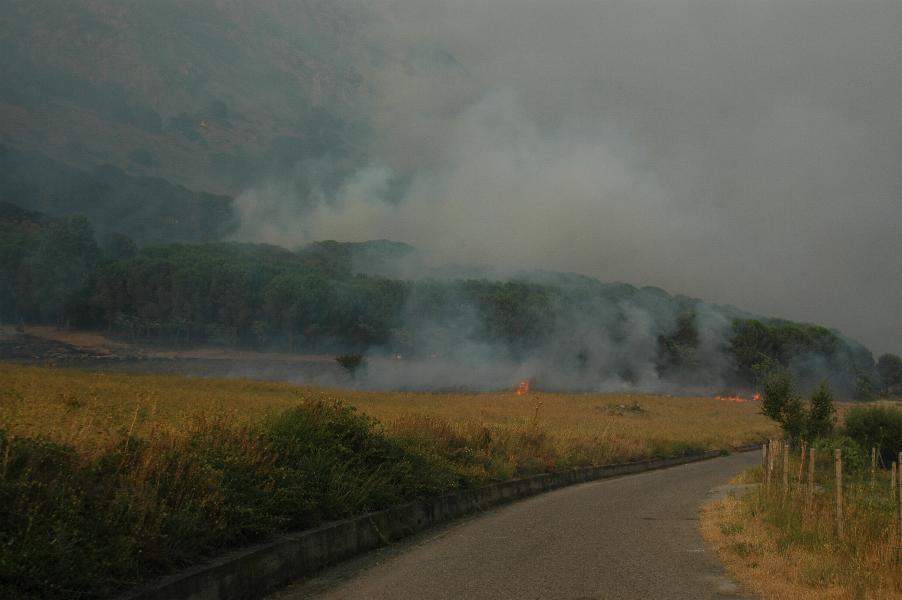 incendiofrascineto_ridotto20034