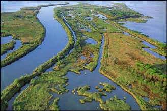 fiume_po_delta