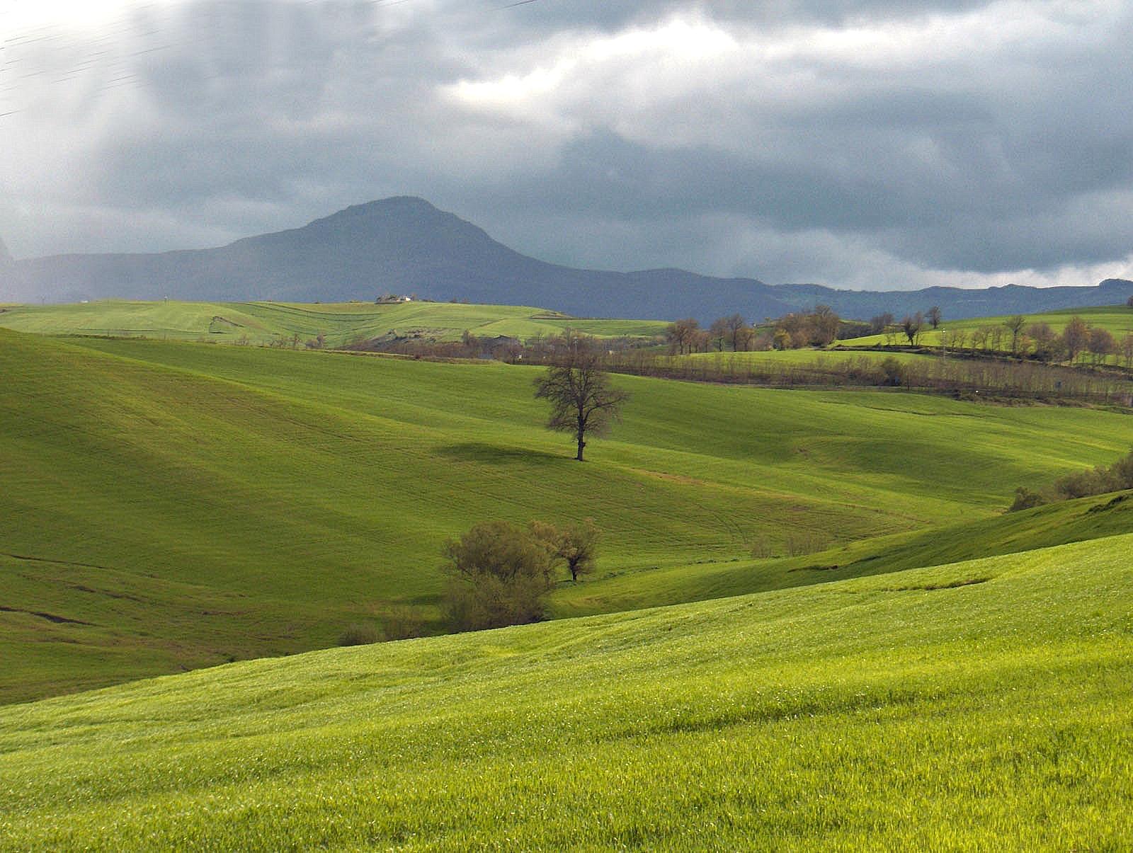 Storia: allevamento equino nel medioevo in Basilicata *